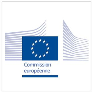logo commission europeenne (Blanc)