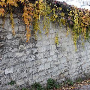 rue-des-saules-032.JPG