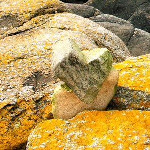 Bretagne Finistère Nord 29 Kern six - Coeur de Brtagne