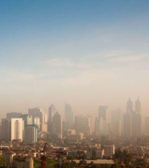 la-chaleur-qui-se-degage-des-villes-influence-le-climat-des.jpg