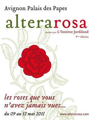 alterarosa2.jpg