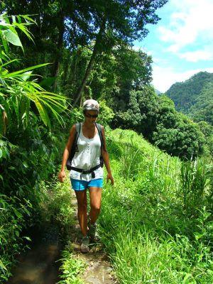 Le Nord Caraïbe