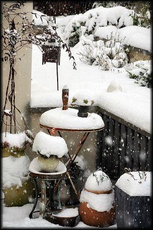 2013---Jardin-sous-la-neige-5a.jpg