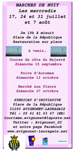 flyer-marches-2013.jpg