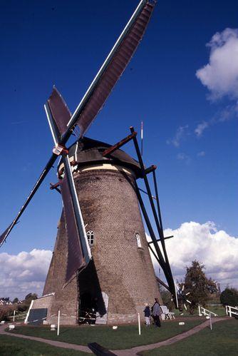 Paysa-Bas---moulins-digue.jpg