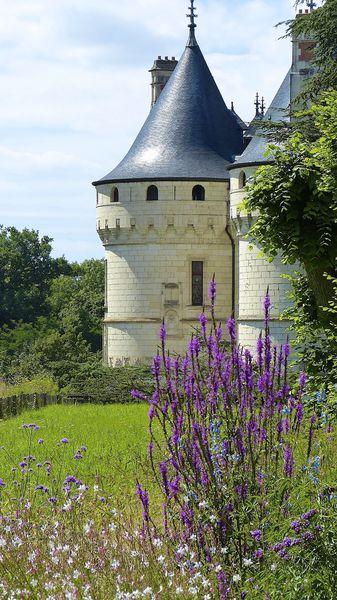 Château Chaumont sur Loire 0003