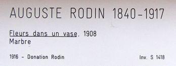 Mus-e-Rodin-3-5852.JPG