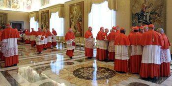 1830215 3 2c93 les-cardinaux-au-vatican-le-11-fevrier 4c549