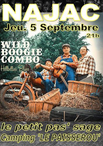 AFFICHE WILD BOOGIE COMBO NAJAC 2013