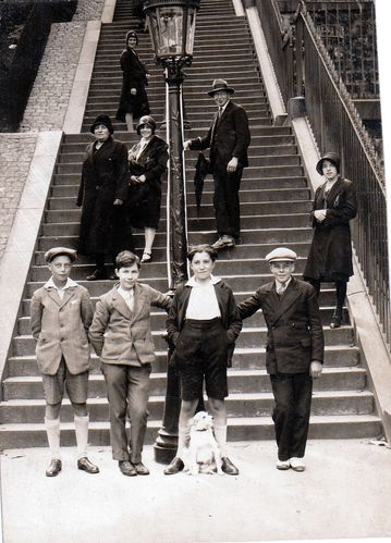 chien-escalier-muller.jpg