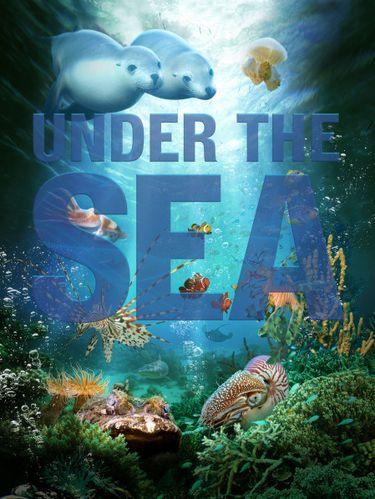 under the sea affiche