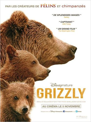 affiche-Grizzly.jpg