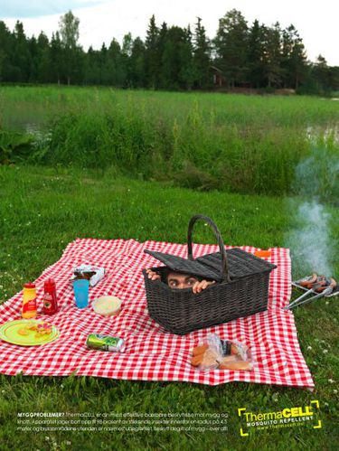 thermacell insecticides Picnic