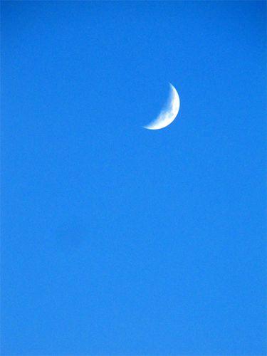 Croissant de lune en plein jour