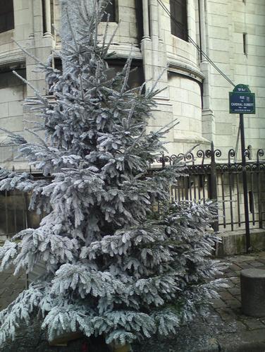 arbre-Noel-S.Coeur.png