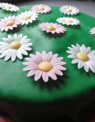 gateau-gazon-fleuri.jpg