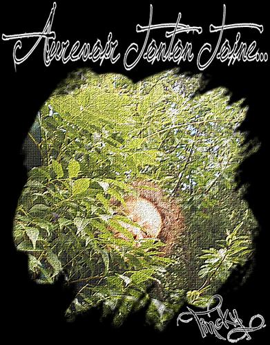 BLOG Création Image Perso pour Aurevoir Tonton Toine