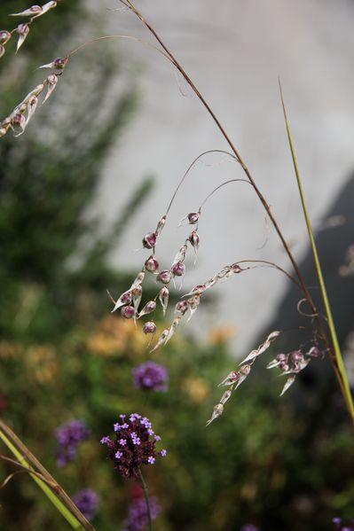 jardin-maritime 8087c
