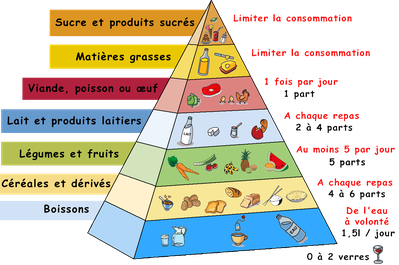 pyramide_alimentaire.png