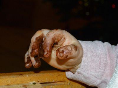 chocolat-main.jpg