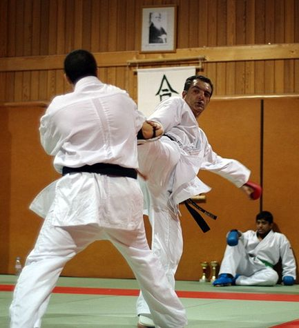 yves Mailliere Karate 1
