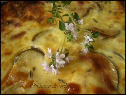 clafoutis ch+¿vre-courgette abricot 007-1