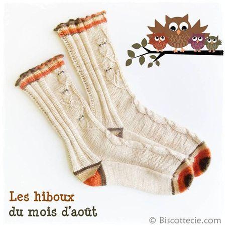 Chaussettes-Hiboux.jpg