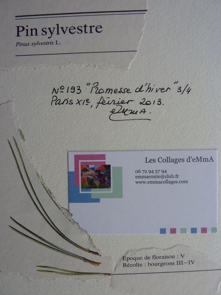 Verso-Promesse-d-hiver.jpg