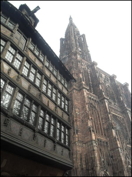 Kammerzell cathedrale strasbourg