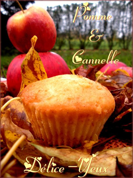 Pomme Cannelle1