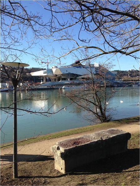 musee-des-confluences-lyon-fevrier-2014.jpg