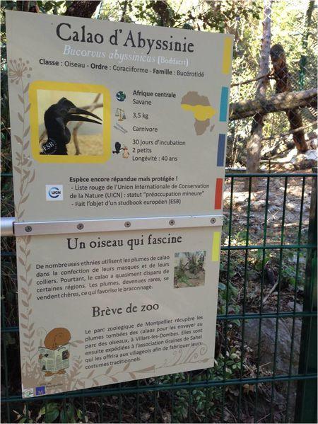 panneau-zoo-montpellier.jpg