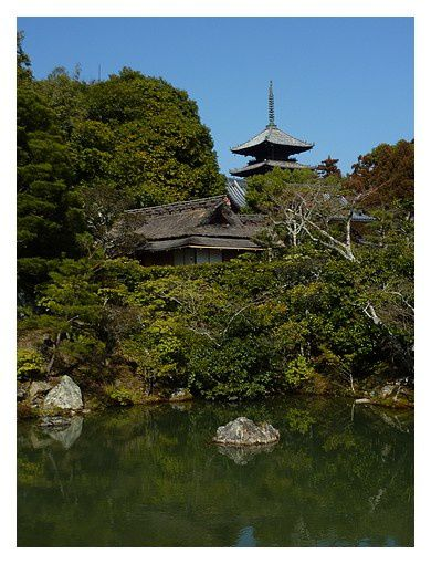 temple Ninna-ji (13)