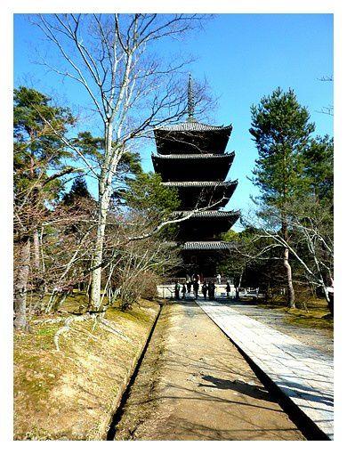temple Ninna-ji (3)