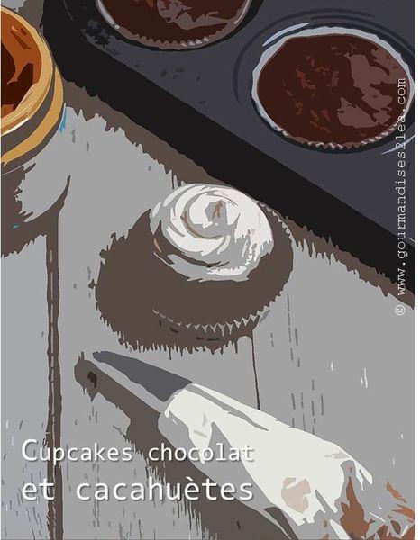 cupcake-chocolat-et-cacahuetes.jpg