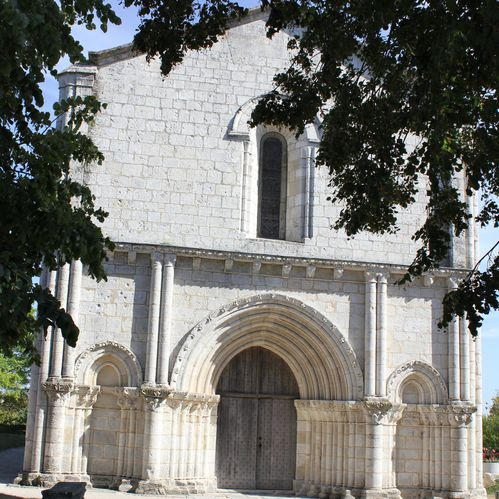 Mornac.St-Sulpice.Oiseaux 046