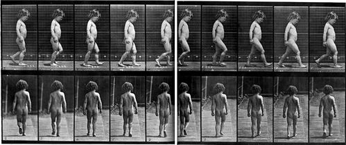 Marche enfant Muybridge