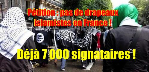 Petition-contre-les-emblemes-islamistes-en-France--7-000-.png