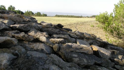 sept2014 Aragon (9)
