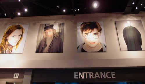 entrance studios harry-potter