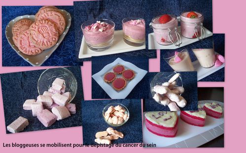 picasa-mosaique-rose-a-faire.jpg