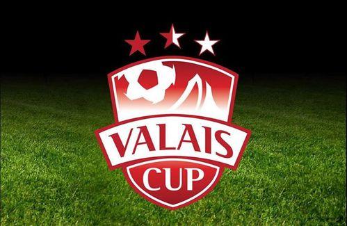 Valais Cup 2013