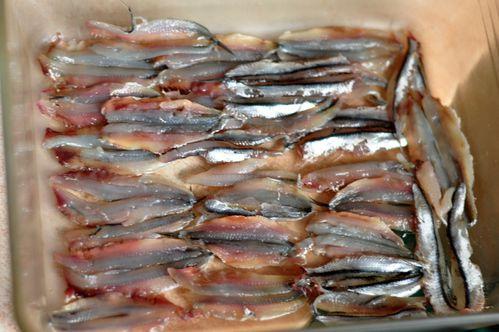 Anchois marinés (3)