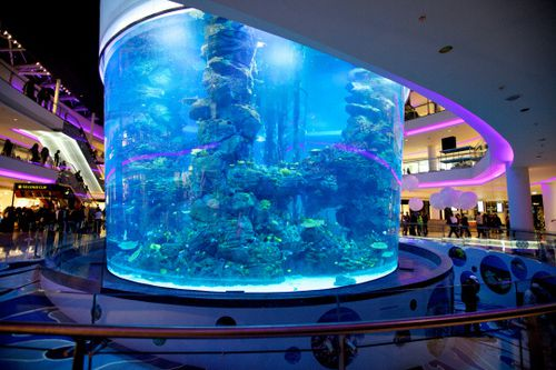 le-furet-du-retail-morocco-mall-3.jpg