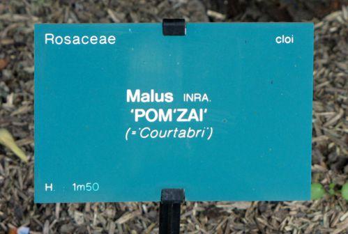 Balades-21-4923.JPG