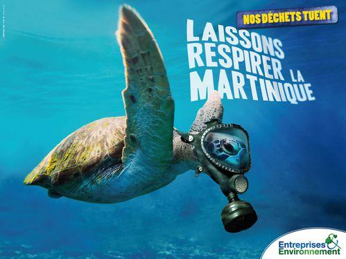 affiche entreprises & environnement Martinique tortue