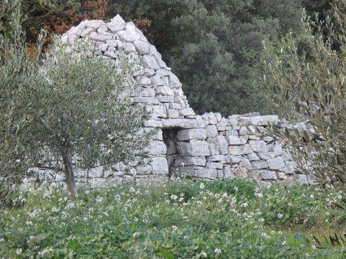 Martignardes 2012 2588