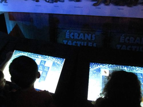 écrans-tactiles-expo-dinosaures