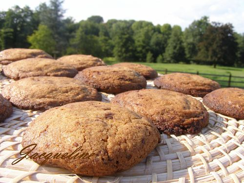Cookies de C.Felder 010 1500