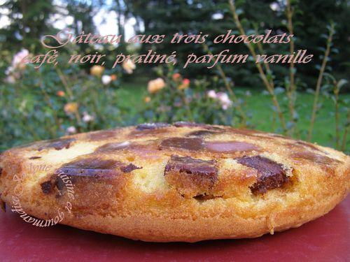 Gâteau aux trois chocolats Café, noir, praliné, parfum vanille Texture aérée, douce Jaclyne cuisine et gourmandise